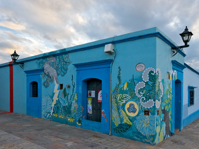 Blue Building with Mural - © 2012 David Hibbard